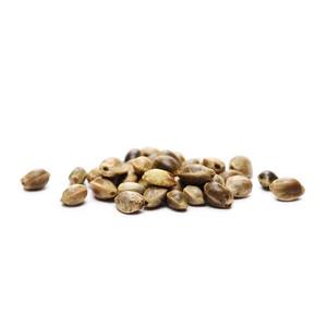 8 Semințe de Canabis Gratuite