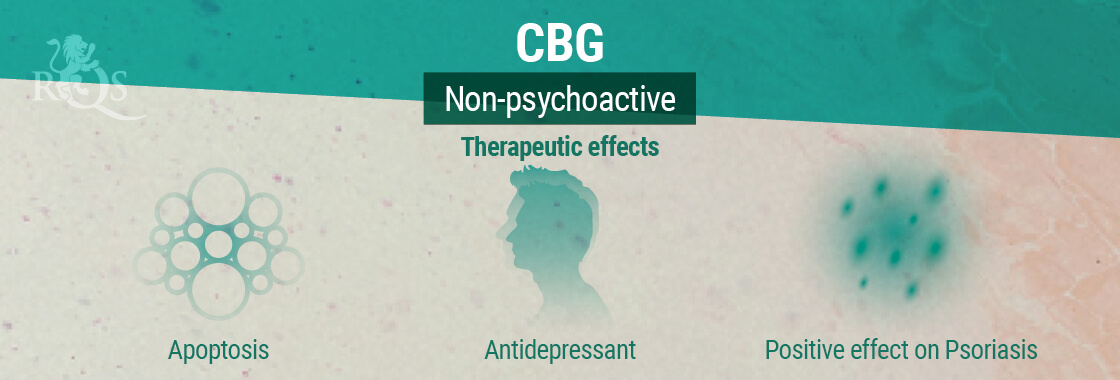 CBG Therapeutic Effects