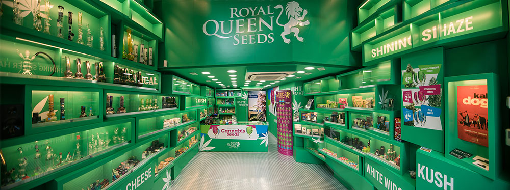 Magazinul Royal Queen Seeds Barcelona