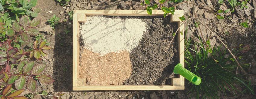 Mai multe sfaturi pentru cultivarea cu succes a canabisului organic la exterior